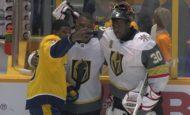 Экзотические игроки НХЛ из стран, где о хоккее знают только из телевизора