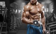 Большой гид по базовым упражнениям на все группы мышц: правильная техника выполнения + примеры тренировок